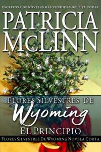 Book Cover: El principio – Una novela corta