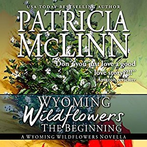 the beginning audio book patricia mclinn