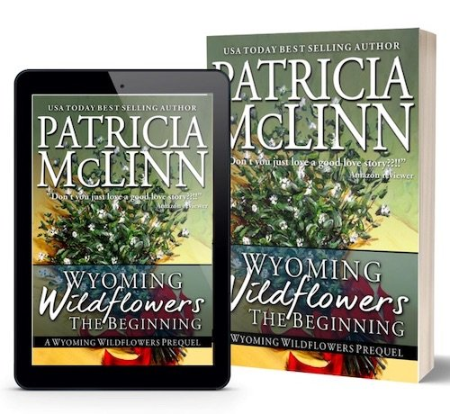 Patricia McLinn, Wyoming Wildflowers prequel, western romance series, Christmas romance, holiday romance. opposites attract